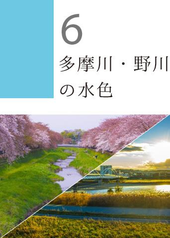 6 多摩川・野川の水色